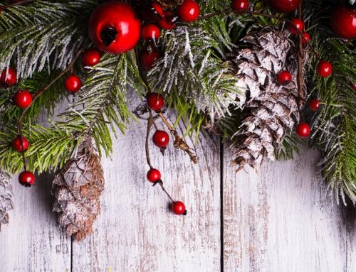 A Natale basta poco per essere tutti più buoni!